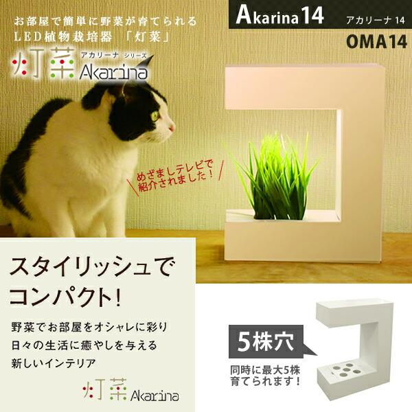 Akarina14 (アカリーナ) OMA14