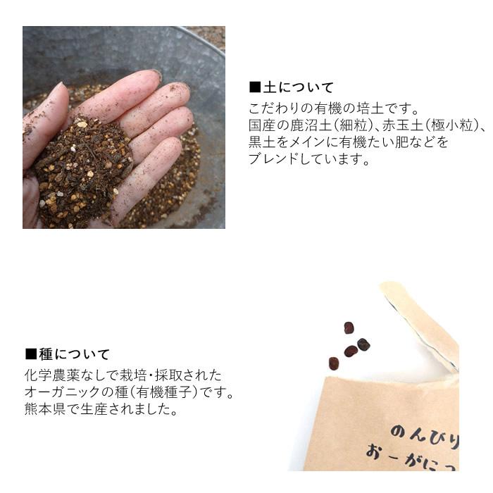 オーガニック栽培キット
