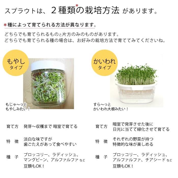 スプラウトは2種類の栽培方法