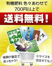 3000円以上送料無料!
