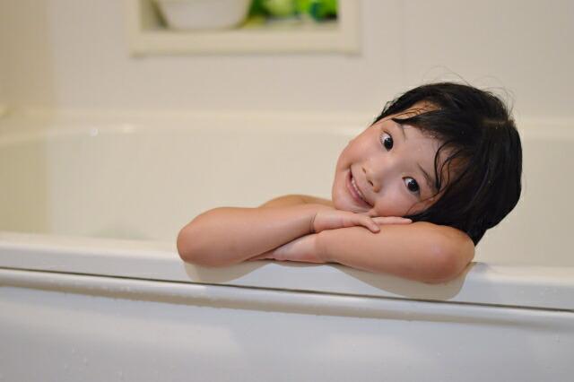洗濯槽クリーナー ドラピカ 風呂釜