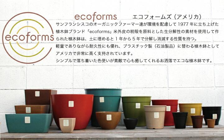 ecoforms