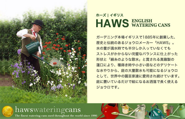 HAWS ホーズ