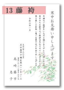 寒中はがき 「13:藤袴」