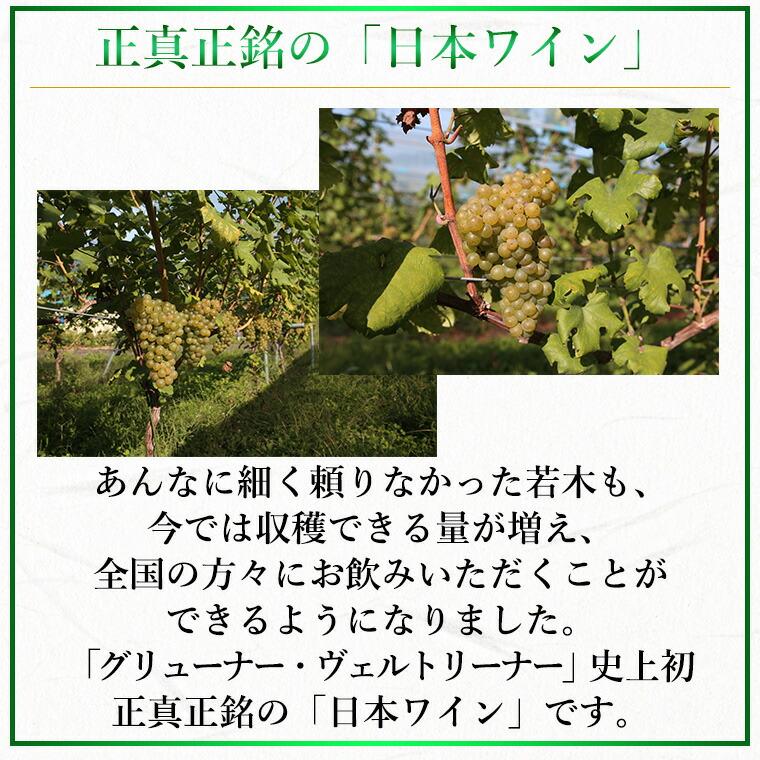 正真正銘の「日本ワイン