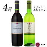 今月のワインセット
