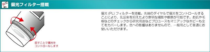 dino-04-01.jpg