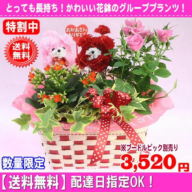 2019母の日長持ち!花鉢マミーバスケット2,980円【送料無料】