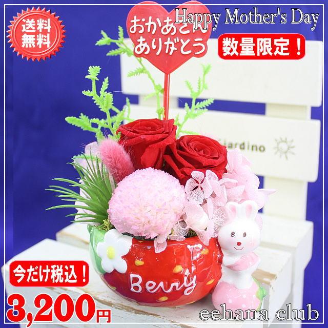 大人気!プリザいちごレッド3,200円【送料無料】