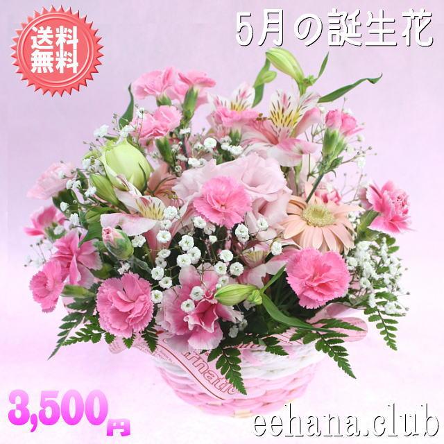 5月の誕生花 ピンクアレンジ3,500円【送料無料】