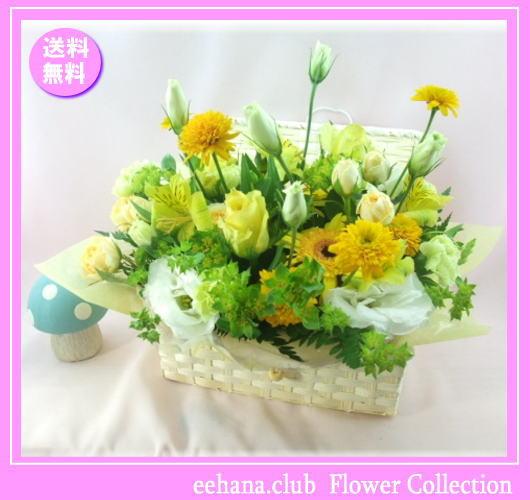 7月の誕生花 イエロー宝石箱アレンジ