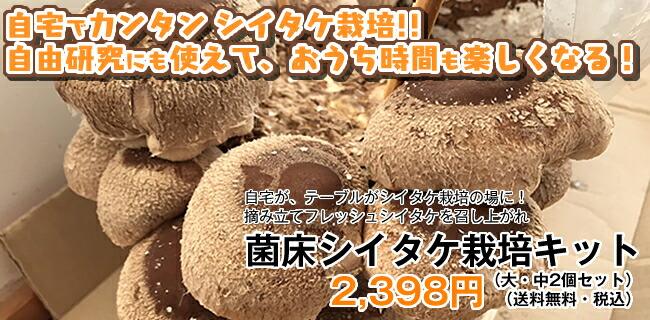 菌床シイタケ栽培キット