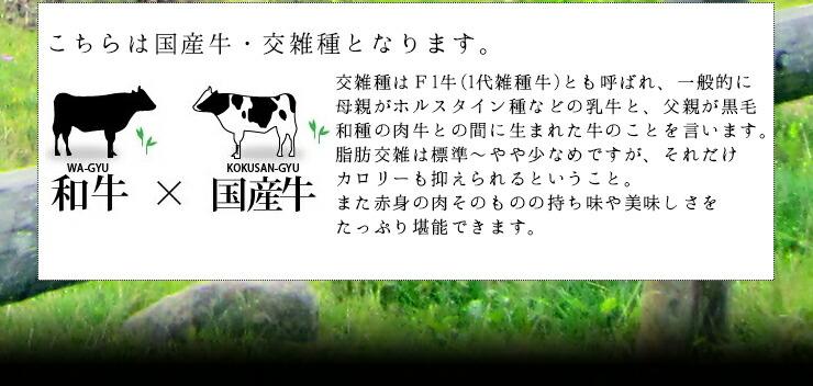 蔵王爽清牛定義