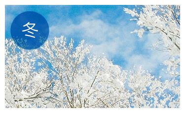 【冬】あったかふんわり