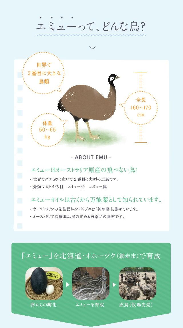 エミュー エミューとダチョウの違いは?大きさや足の速さなどを比較!