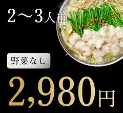 2〜3人前野菜なし