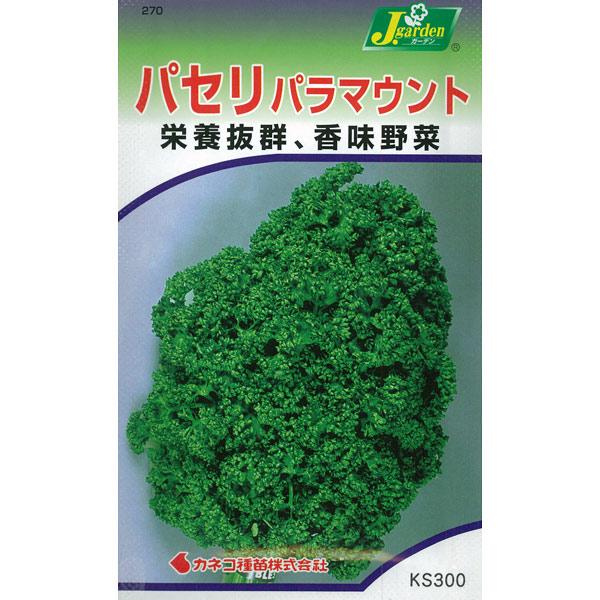 【有効期限19年12月】パラマウントパセリの種*[野菜タネ]