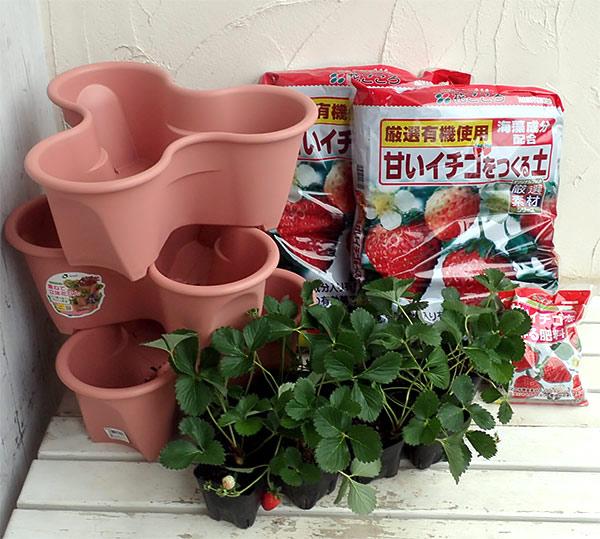 いちご栽培セット(ハーベリーポット)といちご苗9株あきひめ(章姫)