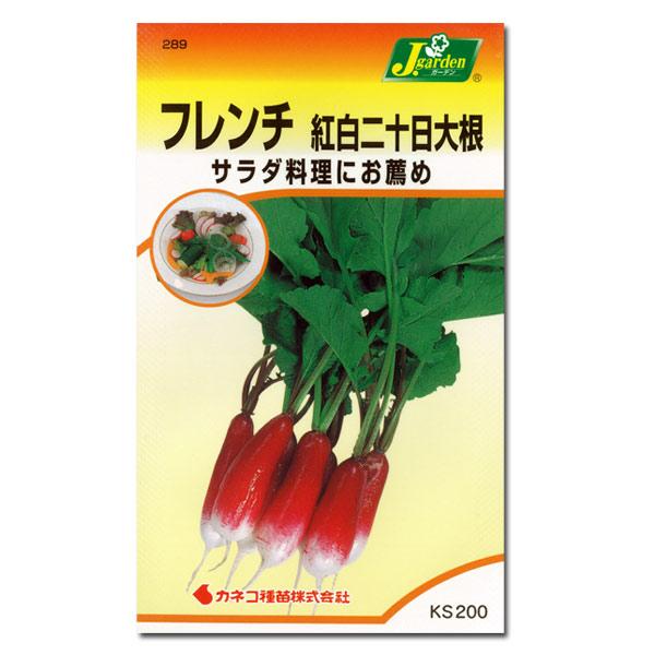 【有効期限19年12月】フレンチ 紅白二十日大根[野菜タネ]