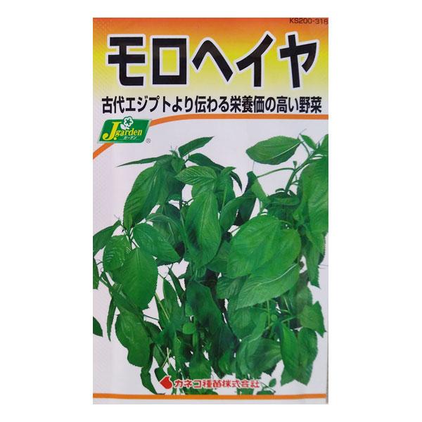 【有効期限19年12月】モロヘイヤ[野菜タネ]