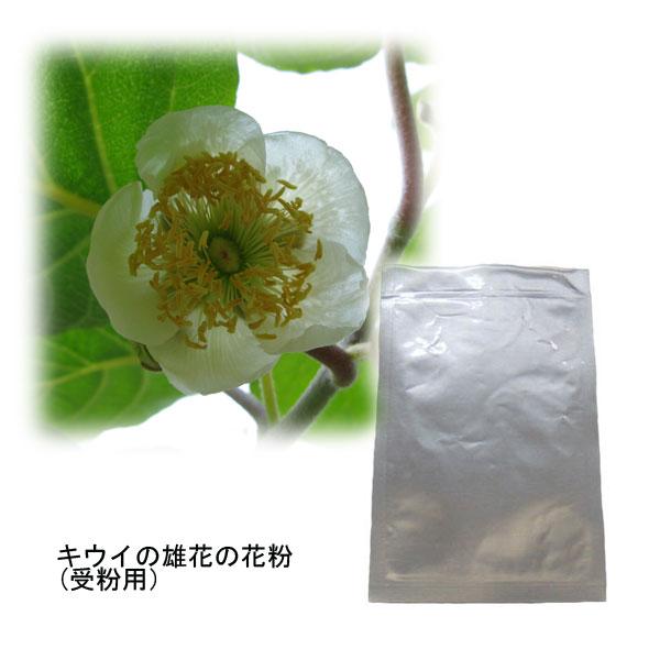 キウイの花粉(キウイ受粉用)2袋セット[タネ]