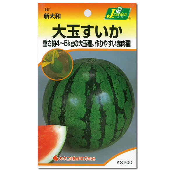 【有効期限19年12月】スイカ:大玉すいか新大和[野菜タネ]