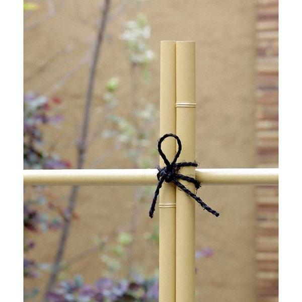 エコ竹 直径1.6cm 長さ183cm 30本セット