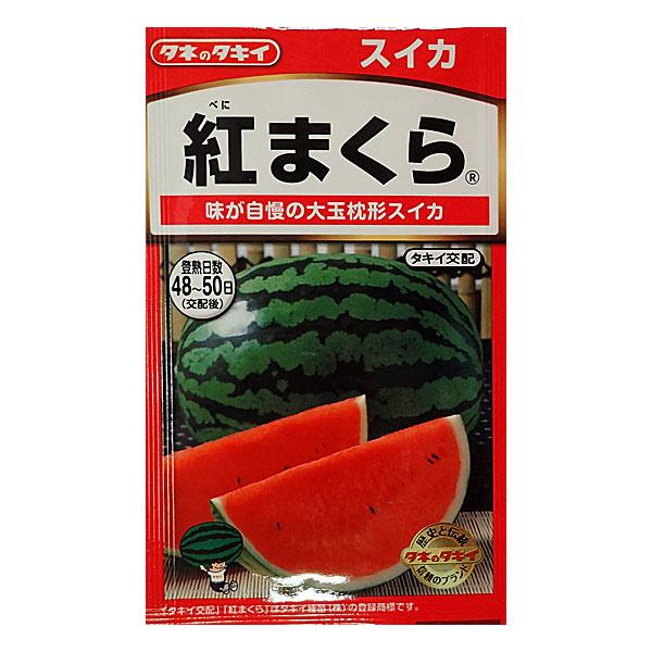 【有効期限20年01月】スイカ:紅まくら[野菜タネ]