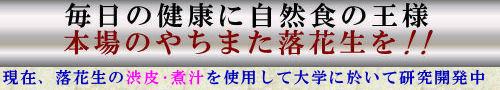 千葉県やちまた落花生(バタピー)
