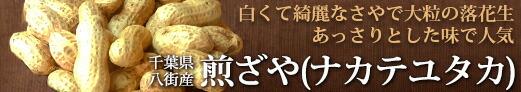 煎ざや(ナカテユタカ)