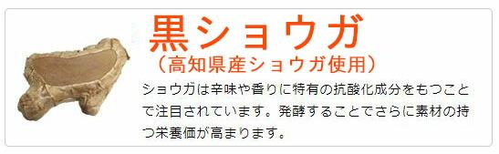 黒ショウガ(高知県産ショウガ使用)ショウガは辛味や香りに特有の抗酸化成分をもつことで注目されています。発酵することでさらに素材の持つ栄養価が高まります。