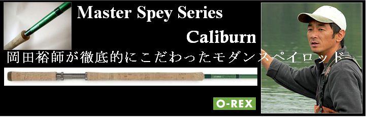 caliburn.jpg (38144 バイト)