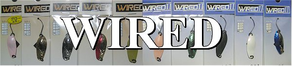 cc-wired.jpg (25143 バイト)