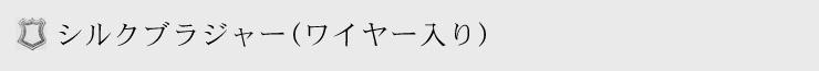 シルクブラジャー(ワイヤー入り)