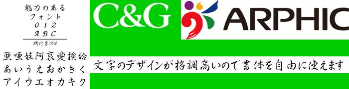 AR行書体M (Windows版 TrueTypeフォントJIS2004字形対応版)【C&G】