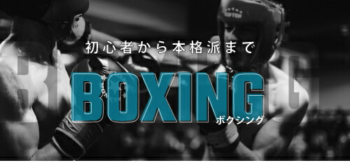 初心者から本格派まで ボクシング用品