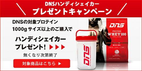 DNSハンディシェイカープレゼントキャンペーン