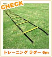 トレーニングラダー6m
