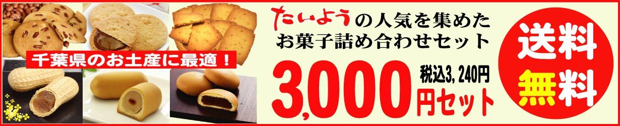 3000set
