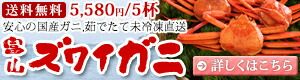 未冷凍!富山のカニ★紅ズワイガニ