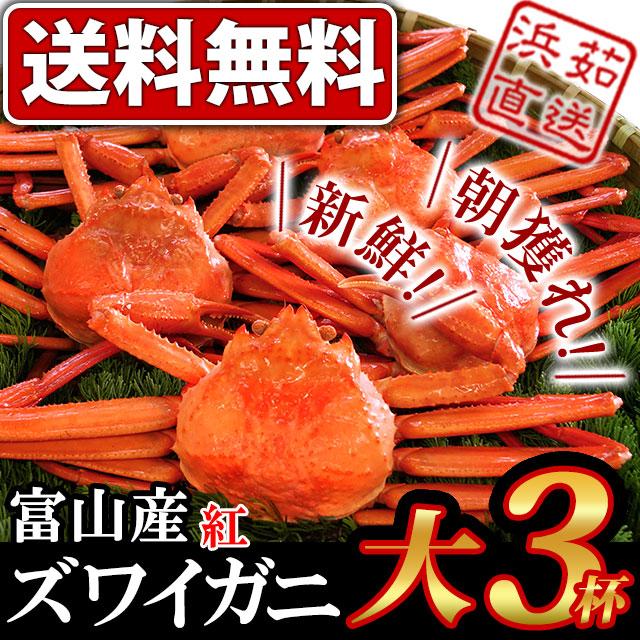 富山産ズワイガニ大サイズ3杯