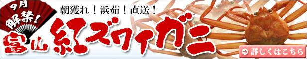 富山産 紅ズワイガニ