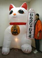 イベントグッズ/お正月ジャンボ装飾/ジャンボエアブロー 招き猫A 215cm