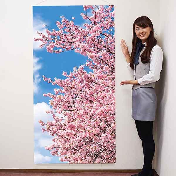 春の装飾 桜タペストリー 防炎加工 L180cm