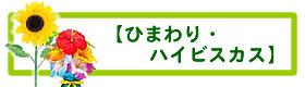 ひまわり・トロピカル