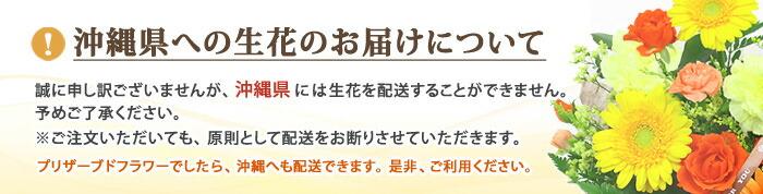 沖縄県への生花の配達は不可