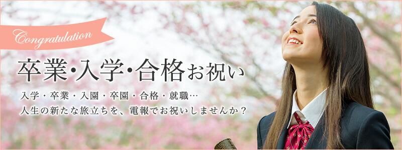 電報屋のエクスメール 卒業・入学 特集