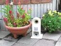 garden_gdx_img4.jpg