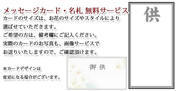 osonae-card.jpg