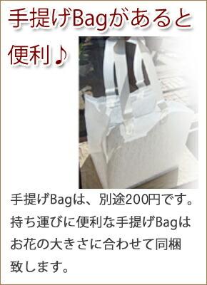 setumei-bag-200.jpg